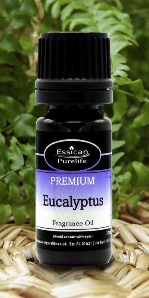 Eucalyptus fragrance oil from Essican Purelife | Fragrance Oils UK